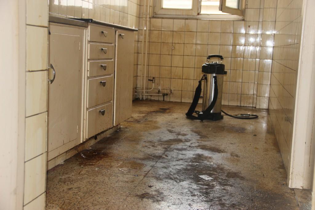 septembre 2013 nettoyage après décès avant, bactérie, microbe et insectes sont présent